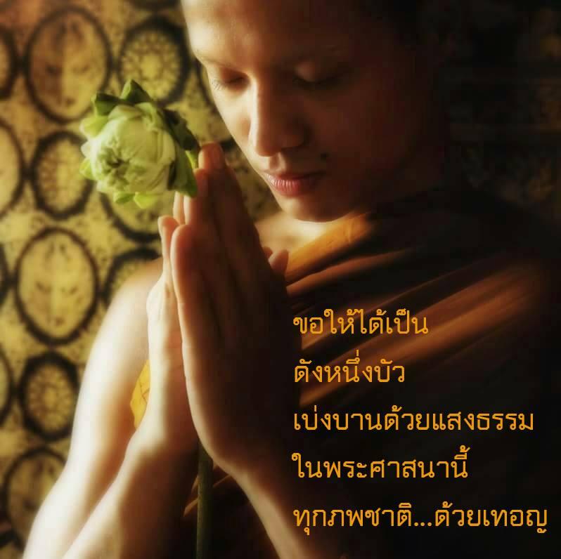 ขอให้ได้เป็นดังหนึ่งบัว, ดอกบัว, พนมมือ, พระสงฆ์, พระภิกษุ, ไหว้, ขอพร, แสงธรรม, lotus, Monk,