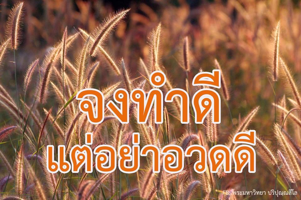 จงทำดี, แต่อย่าอวดดี, good, ดอกหญ้า,